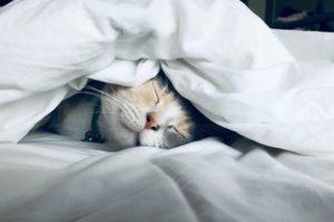 Sleep Deeply Hypnosis
